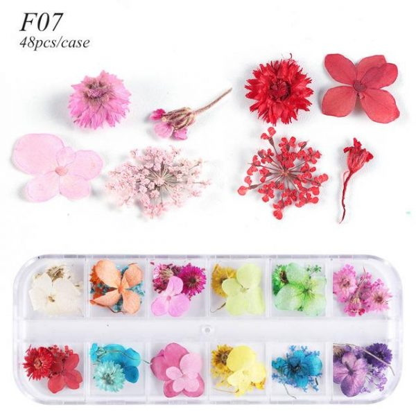 1 Case Dried Flowers Nail Art Decorations VT202032 - Vettsy