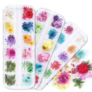 1 Case Dried Flowers Nail Art Decorations VT202032 - Vettsy